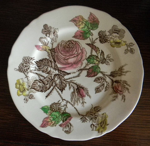 Shabby Pink and Yellow Roses Vintage Brown Transferware Plate English