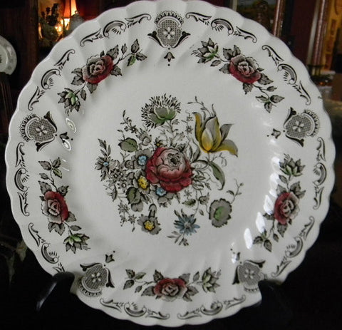 Dark Brown Polychrome Transferware  Plate Myott Bouquet of Tulips Roses Flowers and Scrolls