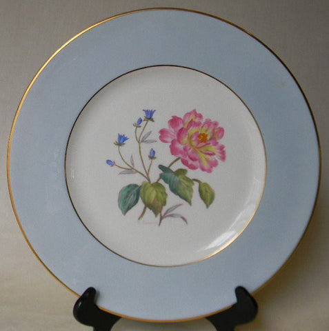 English Staffordshire Charger Plate George Jones Spring Carnation Hand Painted and Signed 9 in Series of 12 RARE