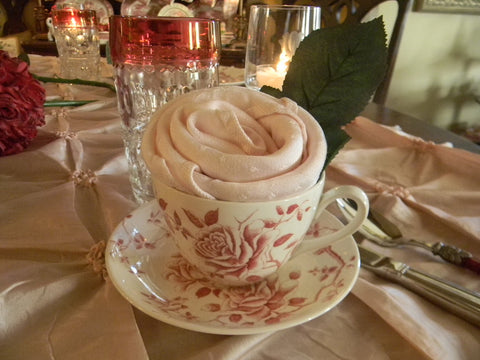 Victorian Style Vintage Red Transferware Toile Roses English China Teacup Cup and Saucer Floral Teacup