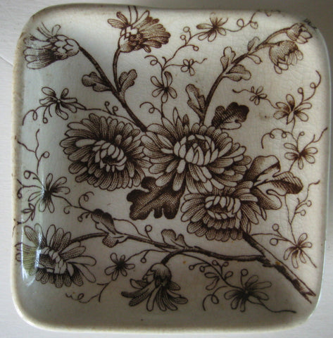 Antique Aesthetic Movement Brown Transferware Butter Pat  Grindley Spring Daisies