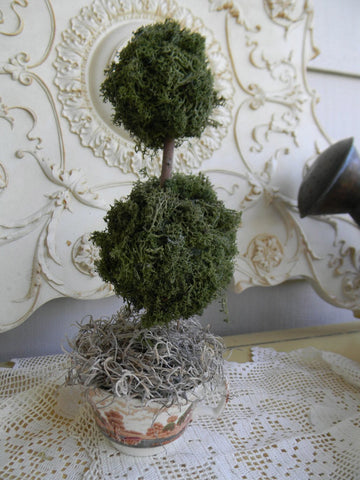 Reindeer Moss Double Ball  Topiary in Vintage Brown Polychrome English Transferware Tea Cup