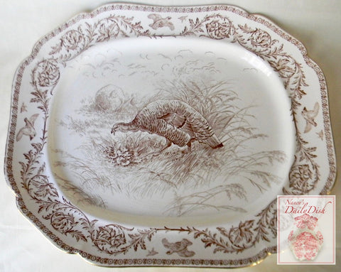Extra HUGE Antique Brown Transferware Staffordshire Thanksgiving Turkey Platter Royal Cauldon 22""