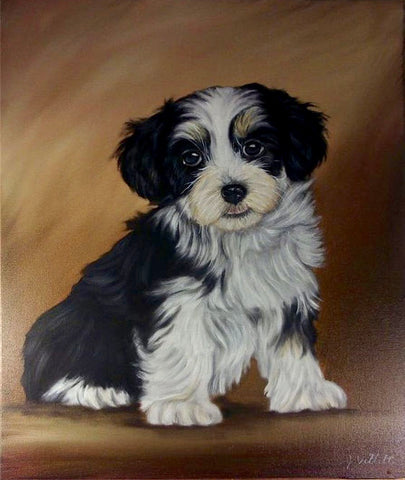 "Large 20"" Original Hand Painted Oil Havanese Puppy Dog  Artist Signed Painting"