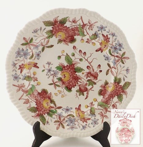 Spode Polychrome Red & Lilac Transferware Salad Plate Aster Flowers