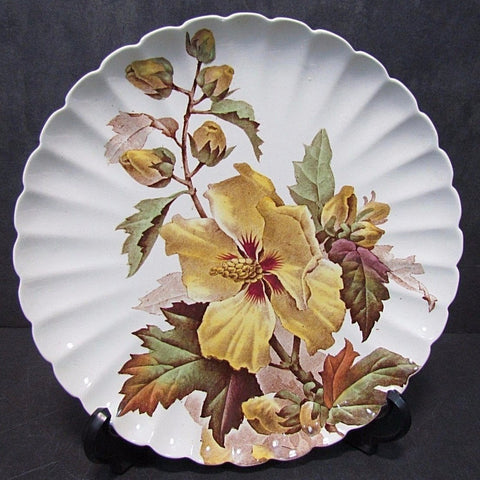 Circa 1880's Aesthetic Movement  Brown Transferware Hibiscus Plate by Brown Westhead & Moore