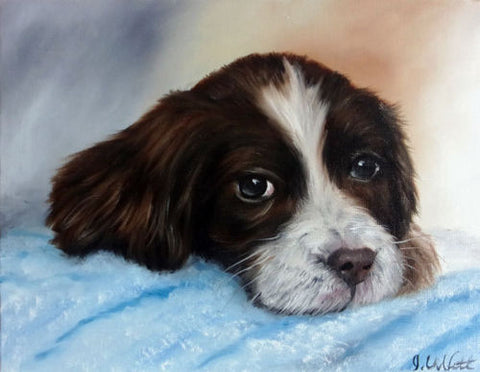 Hand Painted Oil English Spaniel Puppy Dog On Blue Blanket Artist Signed Original Painting