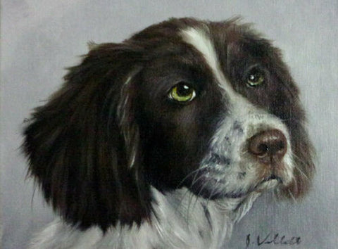 Original Artist Signed Oil Painting Green Eyed English Spaniel Dog Profile Hand Painted