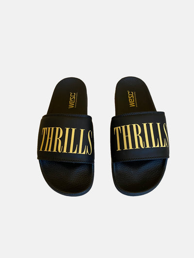 THRILLS SLIDE