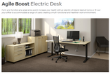 Agile Boost 2 Col Electric desk