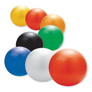 AllCare Exercise Ball
