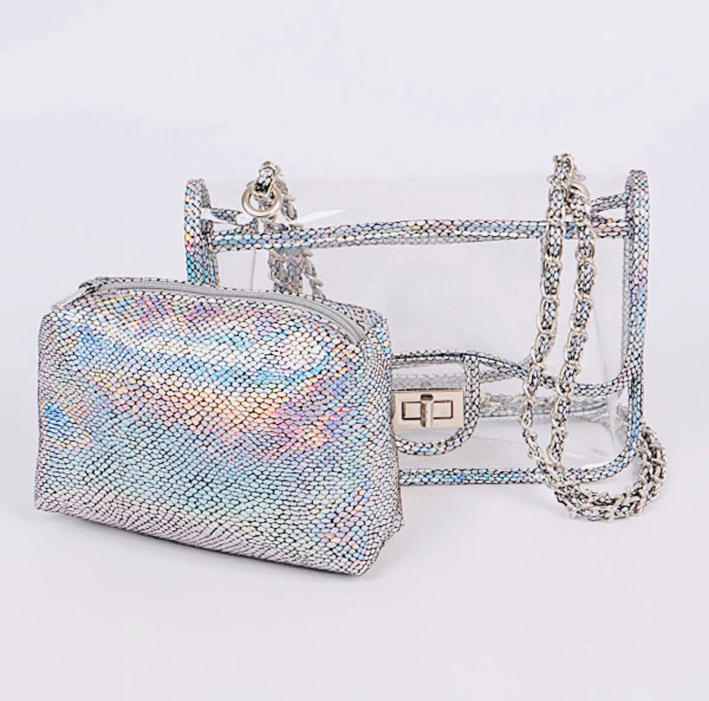 Metallic Silver Stadium Purse