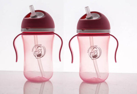 Baby Womb World Sippy Cup Collection-Sippy Cup-Little Kingdom