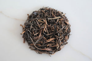 Ancient Tree Puer