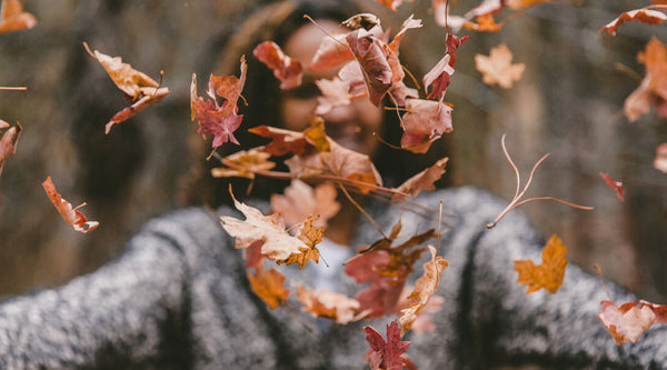 5 Fall Activities To Do This Season