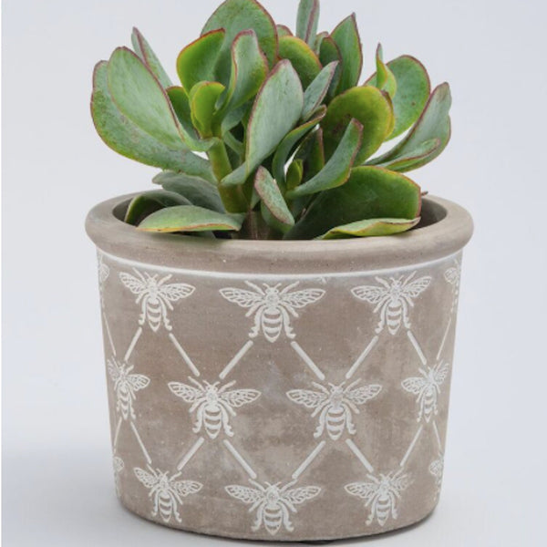 Concrete Bee Planter - Floral Affaire