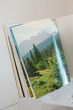 Load image into Gallery viewer, Vintage The Alps in Colour book (D312)