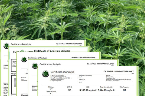 Certificate of Analysis for CBD Products