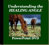 Understanding the Healing Angle PowerPoint (DVD) with Jaime Jackson
