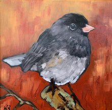 Load image into Gallery viewer, Junco