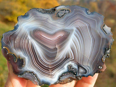 A Slab of agate FROM BOTSWANA, Central District, Bobonong, Tuli Block Area,. Photo by avegaon on Flickr