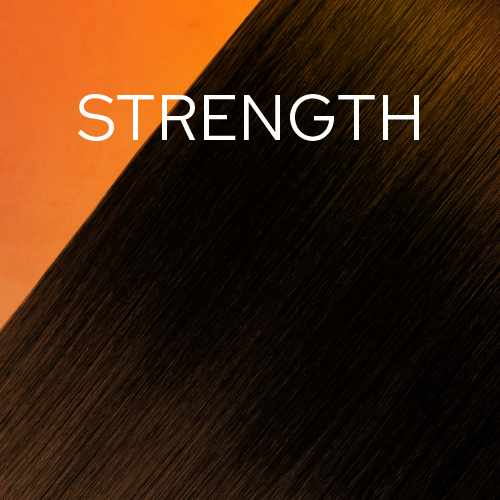 Strength Hair Goals Plan - 4 Month Subscription