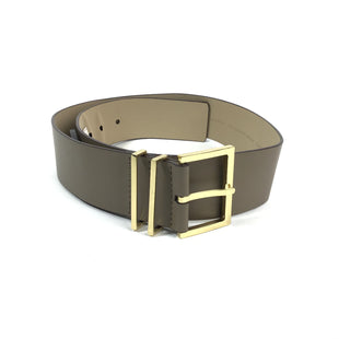Primary Photo - BRAND: ANN TAYLOR STYLE: BELT COLOR: TAUPE SIZE: M OTHER INFO: NWT WIDE BELT SKU: 258-25894-23818