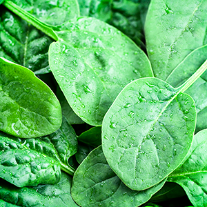 Baby Spinach (200g)