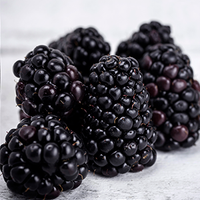 BLACKBERRIES (125G PUNNET)