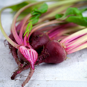 BABY BUNCHED CANDY BEETROOT (BUNCH)