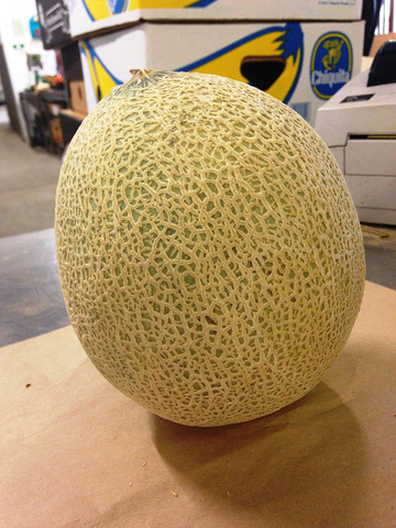 CANTELOUPE MELONS (EACH)