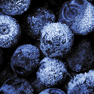 FROZEN BLUEBERRIES (1KG)