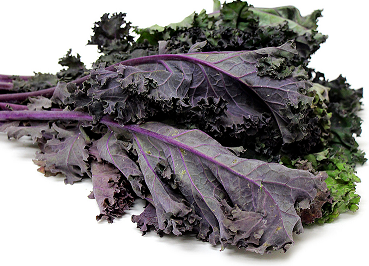 Red Curly Kale (250g)