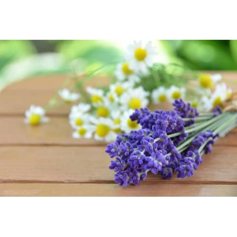 Lavender Chamomile 10-Pack 3 Layer Votive