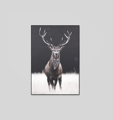 Meadow Deer Neutral Canvas