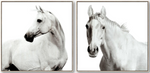 White Horses Set of 2 Canvas