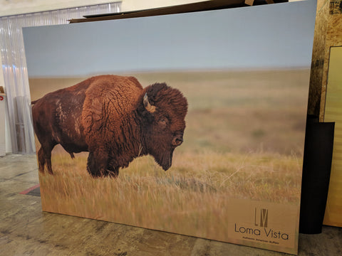 Dallas Safari Club Convention 2018 - Loma Vista Booth Display Background