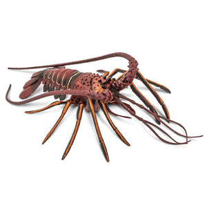 100076-Spiny Lobster
