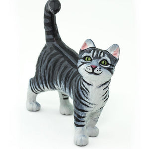 100128-Gray Tabby Cat