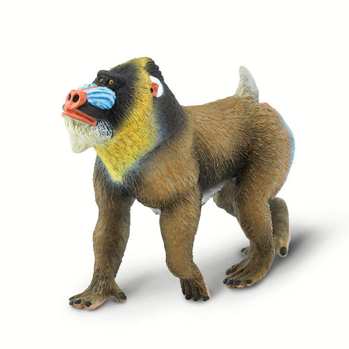 100273-Mandrill |NEW