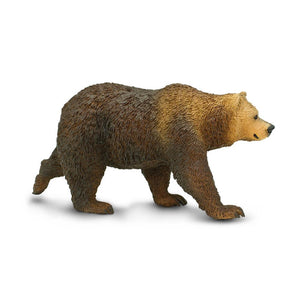 181329-Grizzly Bear