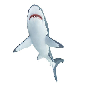 200729-Great White Shark