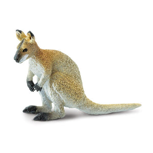 224929-Wallaby