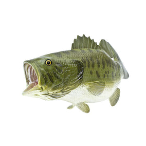 265629-Large Mouth Bass