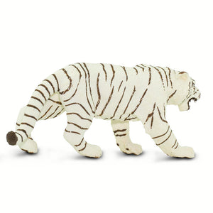 273129-White Bengal Tiger