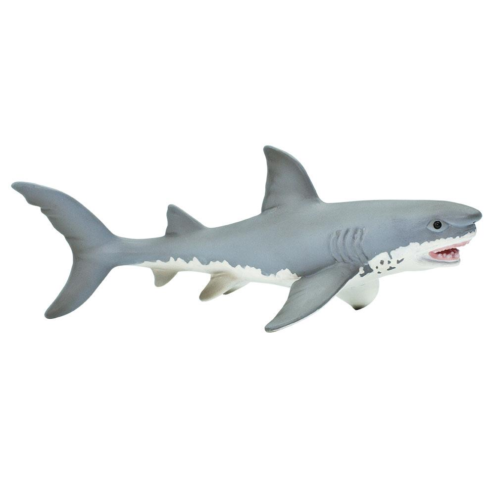 275029-Great White Shark
