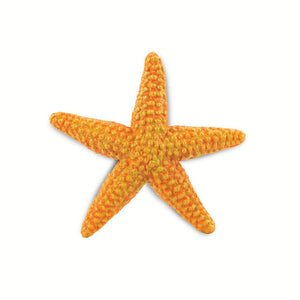 276829-Orange Starfish