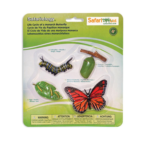 622616-Life Cycle of a Monarch Butterfly
