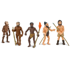 663816-Evolution of Man