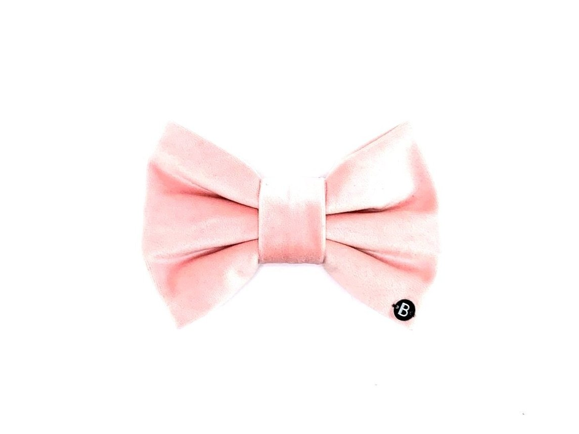 Blush Velvet - Bow - BillyBCollective